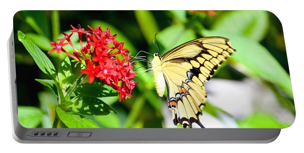 Greeting Portable Battery Charger featuring the photograph A Lovely Profile by Lisa Kilby