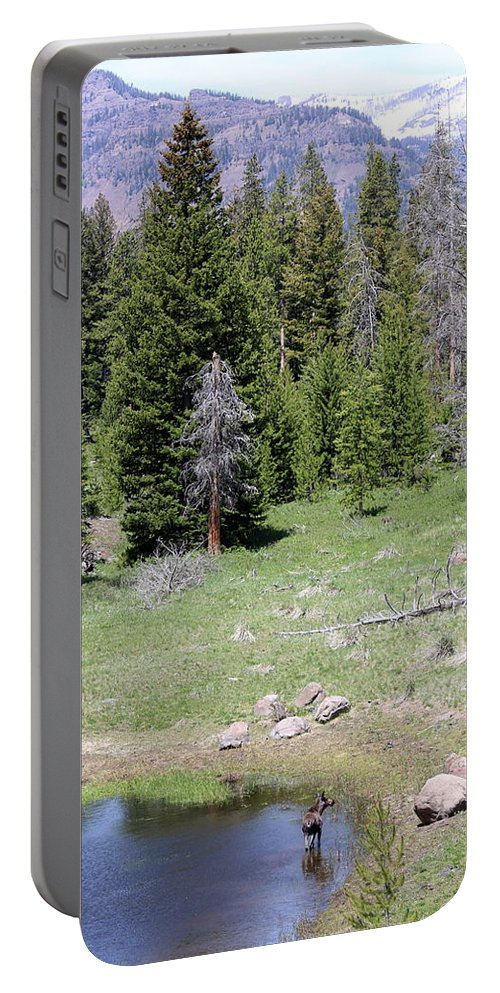 Wyoming Portable Battery Charger featuring the photograph A Moose In The Rockies by Darla Wells