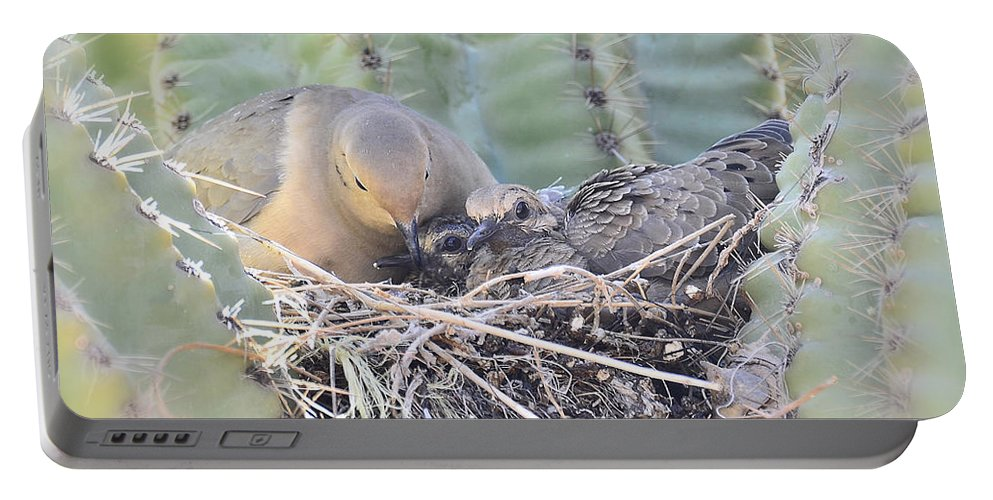 Mourning Dove Portable Battery Charger featuring the photograph A Mother's Love by Saija Lehtonen