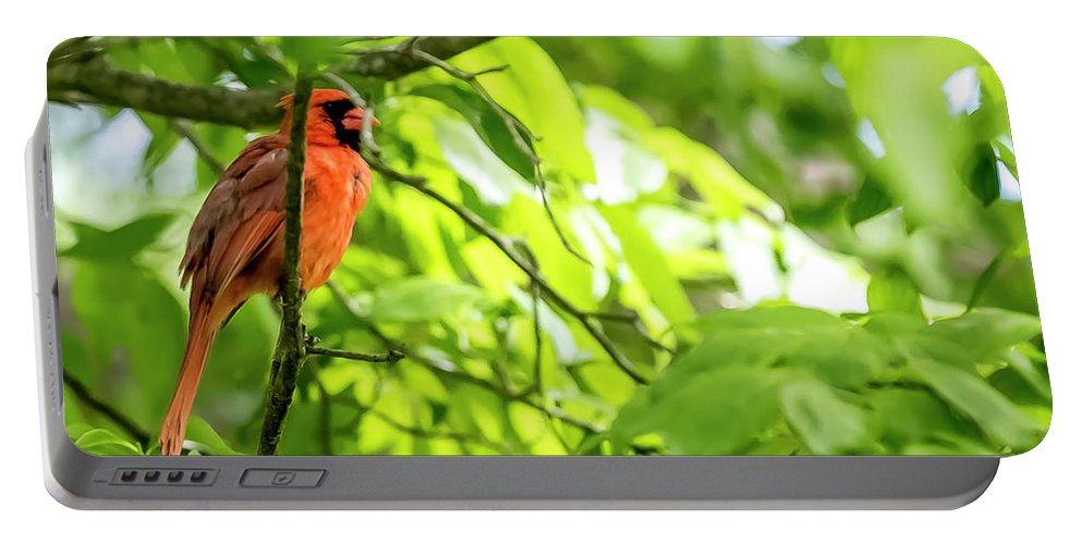 Bird Portable Battery Charger featuring the digital art A Northern Cardinal Enjoying The Springtime by Ed Stines