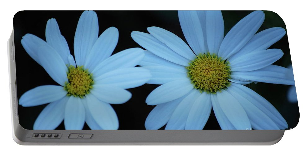 Daisy Portable Battery Charger featuring the photograph A Pair Of Daisies by Lori Tambakis