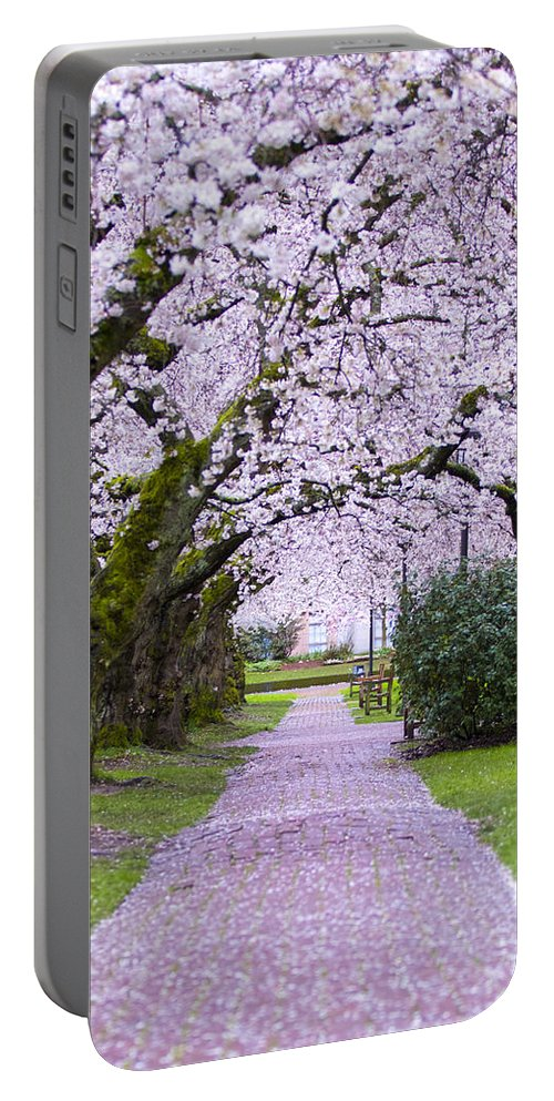 Pink Portable Battery Charger featuring the photograph A Pink Pathway by Matt McDonald