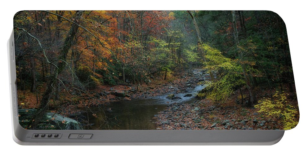 Autumn. Fall. Fall Color Portable Battery Charger featuring the photograph A Place for Tears by Kristina Plaas