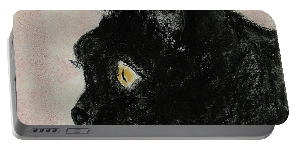 Pastels Portable Battery Charger featuring the mixed media A Purrfect Vision by Cori Solomon