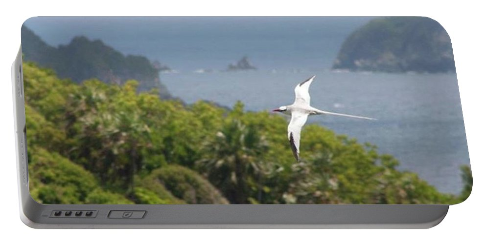 Tropicbird Portable Battery Charger featuring the photograph A Red-billed Tropicbird (phaethon by John Edwards