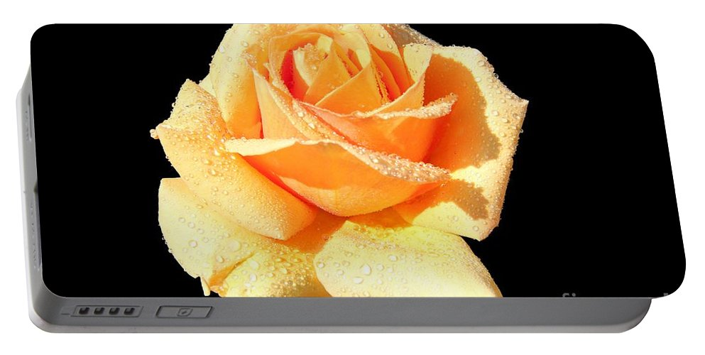 A Rose By Any Other Name Would Smell As Sweet Portable Battery Charger featuring the photograph A Rose By Any Other Name Would Smell As Sweet by Mariola Bitner