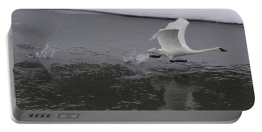 Bird Portable Battery Charger featuring the photograph A Running Start by DeeLon Merritt