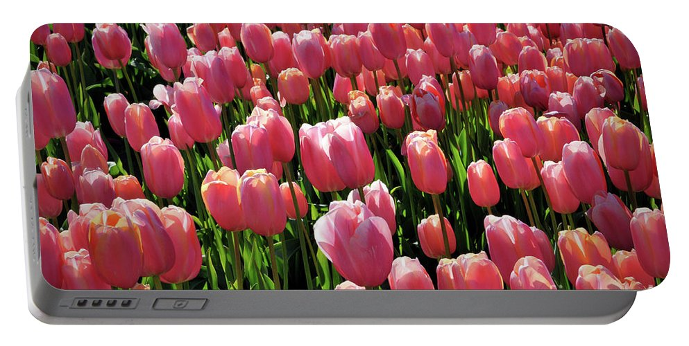 Tulip Portable Battery Charger featuring the photograph A Sea Of Coral by Kimberly Berg-Dunlap