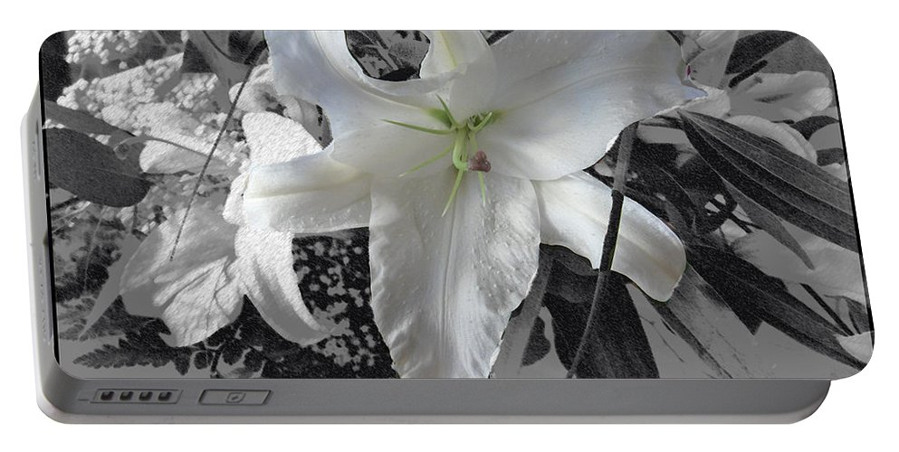 Lily Flowers Plants Nature Natural Flower Lilies Black And White  Portable Battery Charger featuring the photograph A Sense Of Purity by Andrea Lawrence