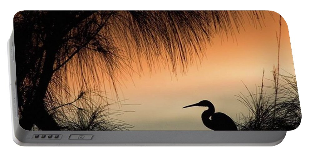 Egret Portable Battery Charger featuring the photograph A Snowy Egret (egretta Thula) Settling by John Edwards