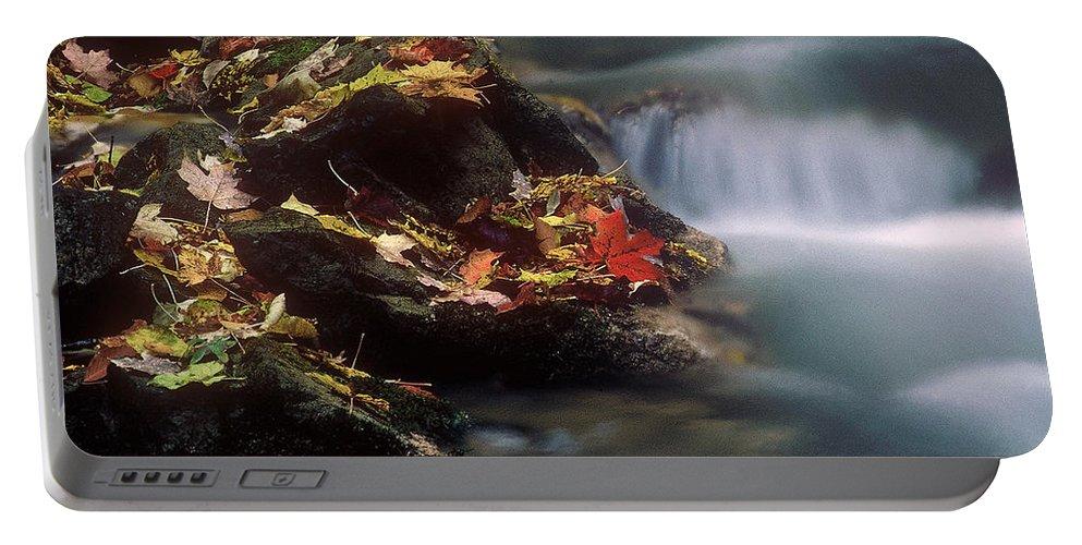 River Portable Battery Charger featuring the photograph A Special Place by D'Arcy Evans