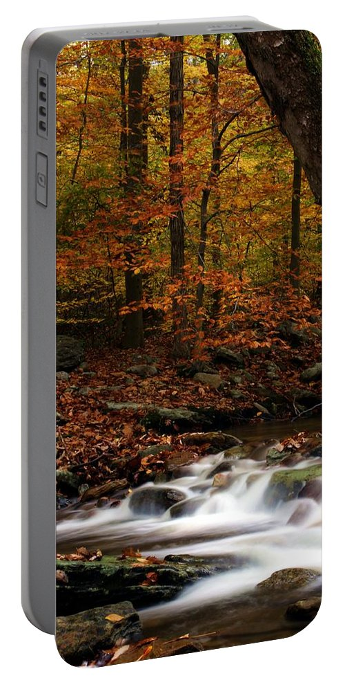 Autumn Portable Battery Charger featuring the photograph A Spectacle by Mitch Cat