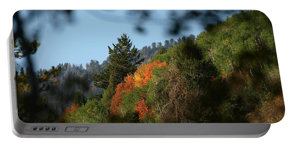 Fall Portable Battery Charger featuring the photograph A Spot Of Fall by DeeLon Merritt