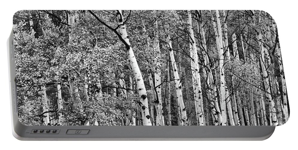 Aspen Portable Battery Charger featuring the photograph A Stand Of Aspen Trees In Black And White by Larry Jost
