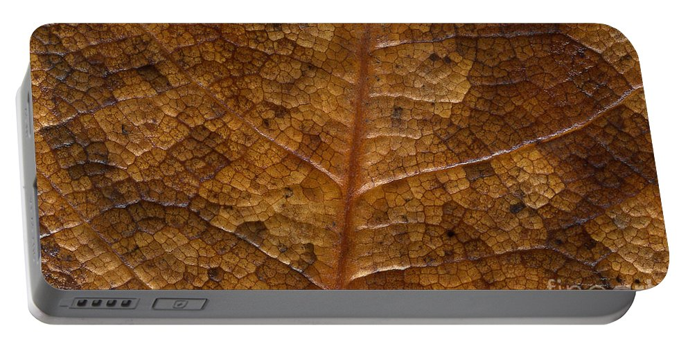 Leaves Portable Battery Charger featuring the photograph A Touch Of Fall by Richard Rizzo
