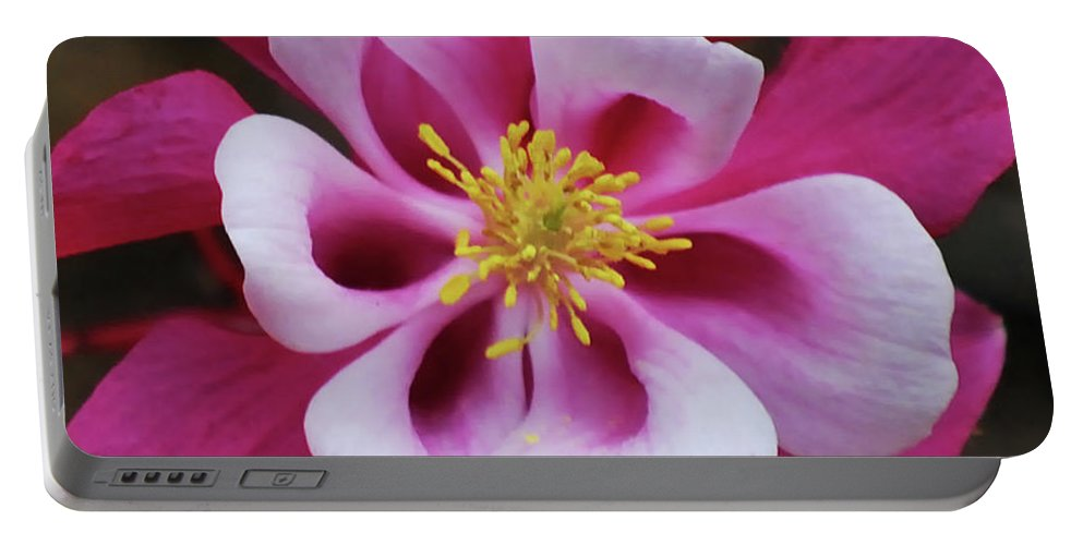 Columbine Portable Battery Charger featuring the photograph A Touch Of Yellow by Lori Tambakis