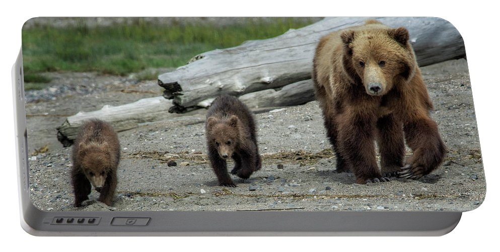 Bears Portable Battery Charger featuring the photograph A Walk On The Beach by Claudia Kuhn
