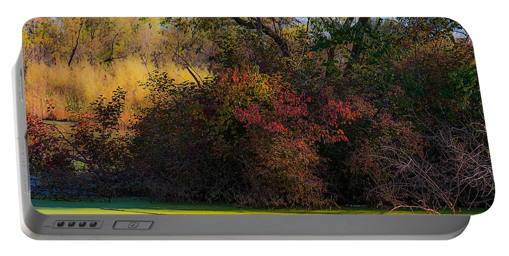 Heron Heaven Portable Battery Charger featuring the photograph A Wetland Display by Edward Peterson
