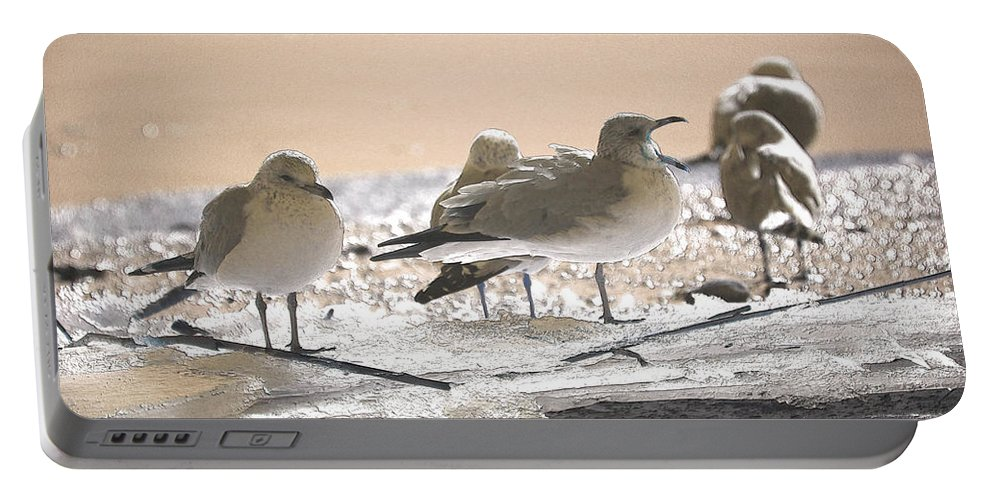 Coastal Portable Battery Charger featuring the photograph A Winter's Day Passing Bye by Karol Livote