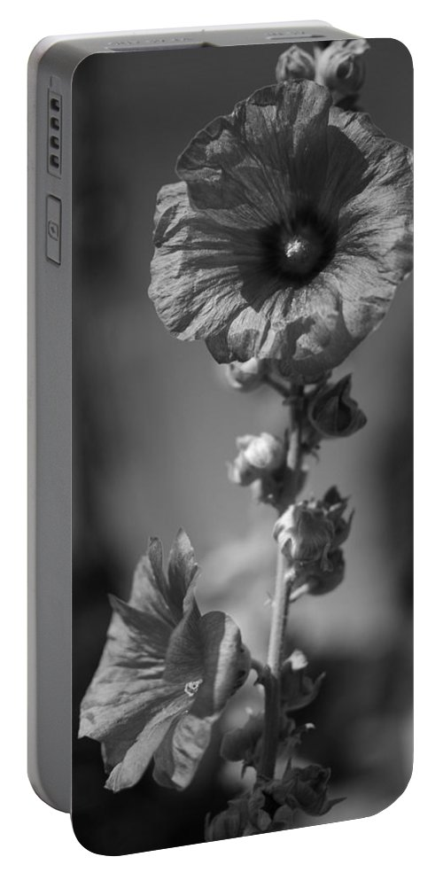 Black And White Photography Portable Battery Charger featuring the photograph A World With No Color Differentiation by Kirk Griffith