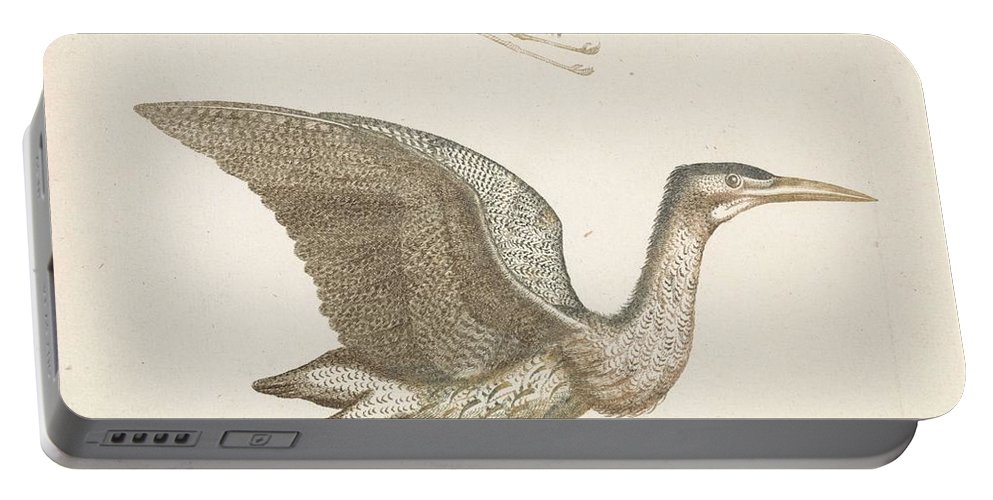 Duck Portable Battery Charger featuring the painting Above A Flying Crane And Beneath A Flying Pelican, Anonymous, 1688 - 1698 by Artistic Rifki