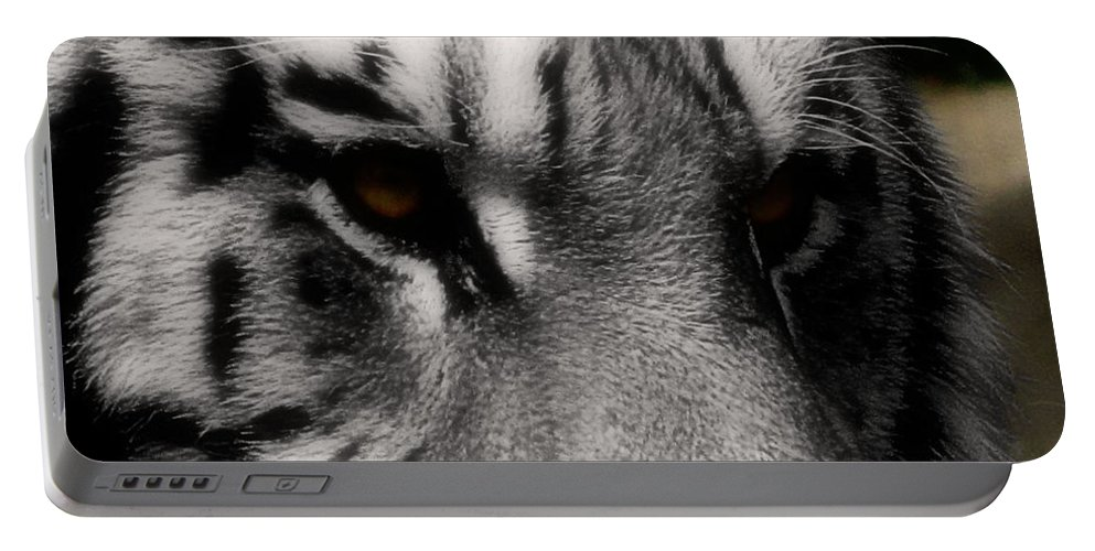 Wildlife Portable Battery Charger featuring the photograph Absolute by September Stone