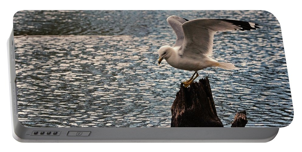 Gull Portable Battery Charger featuring the photograph Abstract by Asbed Iskedjian