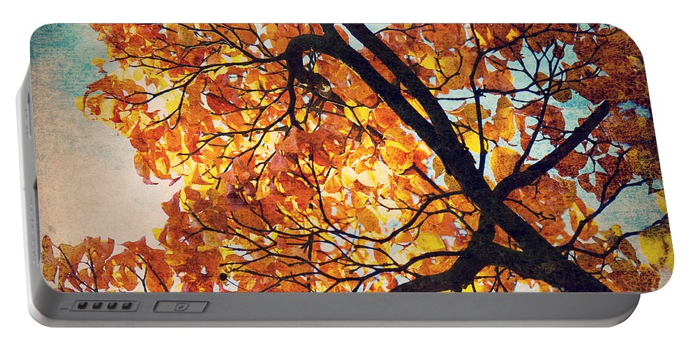 Autumn Portable Battery Charger featuring the photograph Abstract Autumn Impression by Angela Doelling AD DESIGN Photo and PhotoArt