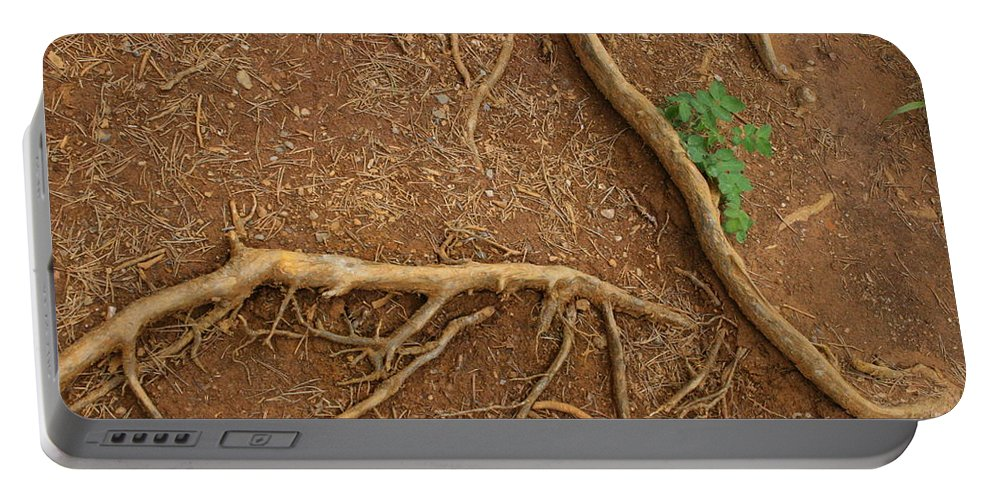 Roots Portable Battery Charger featuring the photograph Abstract Roots by Mary Mikawoz