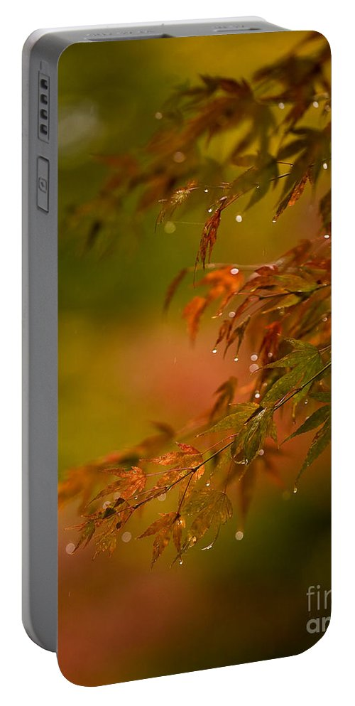 Acer Portable Battery Charger featuring the photograph Acer Jewels by Mike Reid