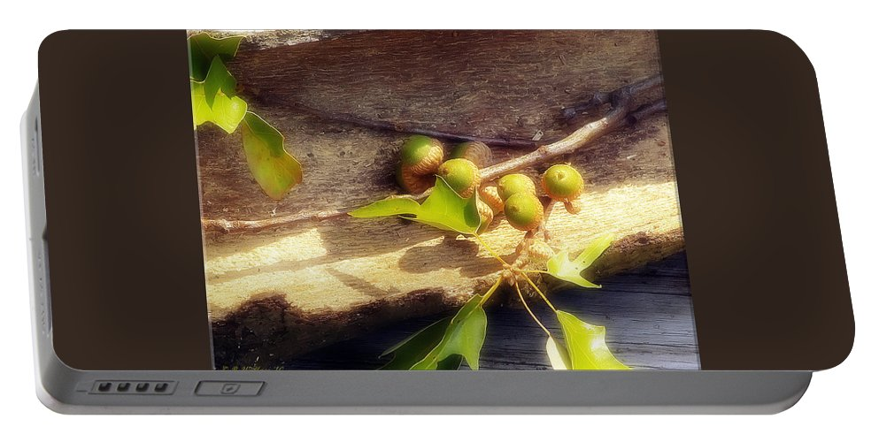 2d Portable Battery Charger featuring the photograph Acorn Shelter by Brian Wallace