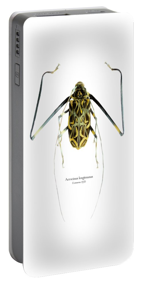 Nature Portable Battery Charger featuring the digital art Acrocinus II by Geronimo Martin Alonso