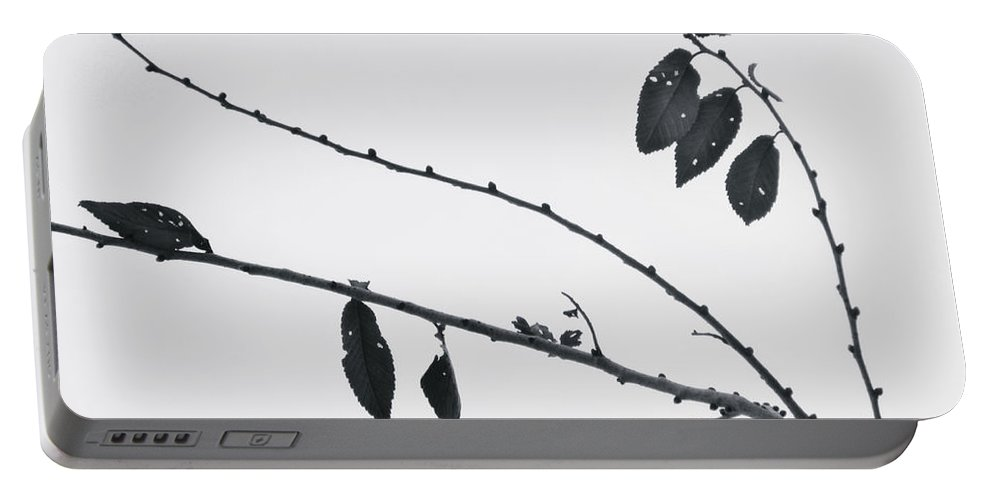 Leaves Portable Battery Charger featuring the photograph Across The Pale Sky by Tara Turner