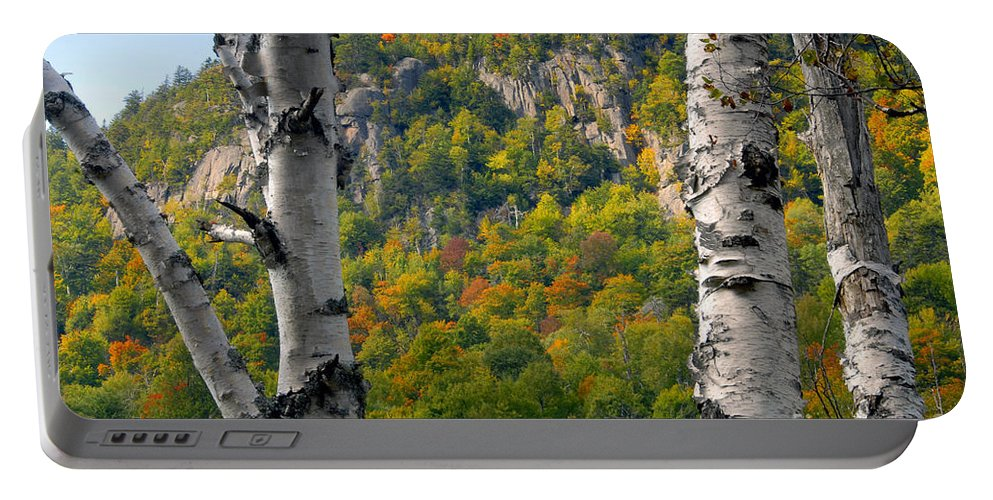 Adirondack Mountains New York Portable Battery Charger featuring the photograph Adirondack Mountains New York by David Lee Thompson