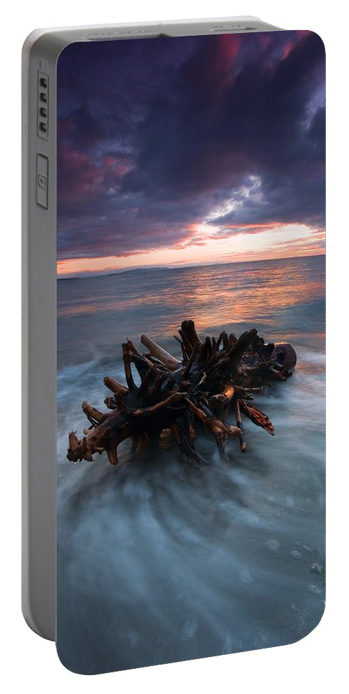 Stump Portable Battery Charger featuring the photograph Adrift by Mike Dawson