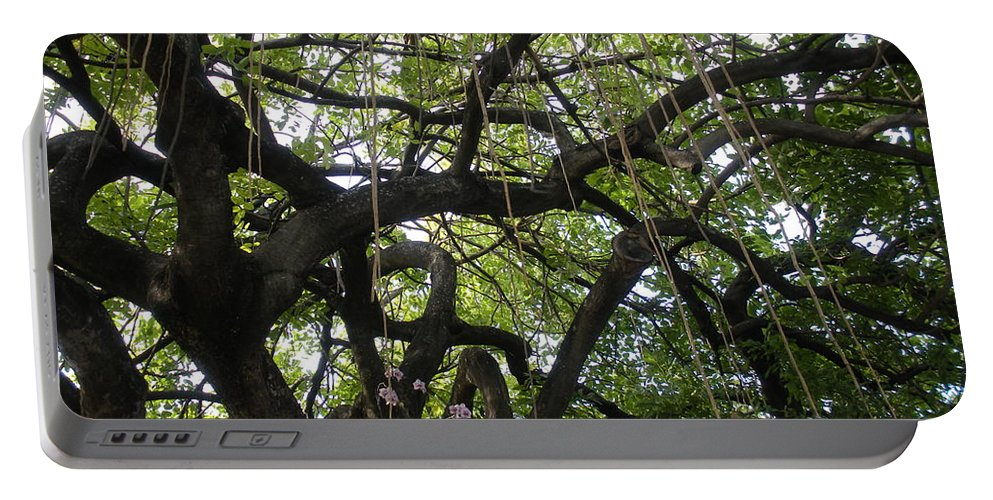 Trees Portable Battery Charger featuring the photograph Aerial Network II by Maria Bonnier-Perez