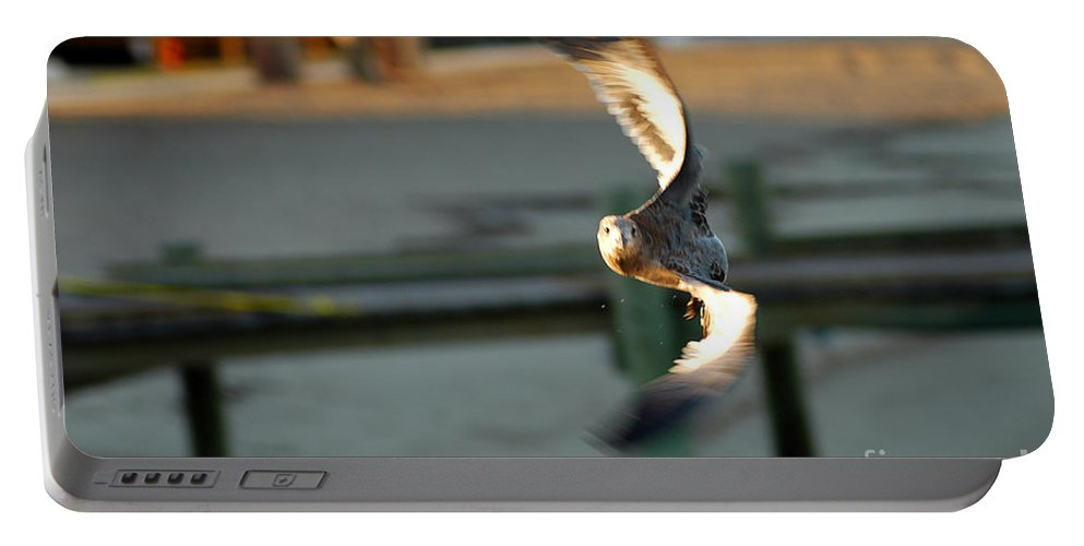 Clay Portable Battery Charger featuring the photograph Aeronautical Acrobatics by Clayton Bruster