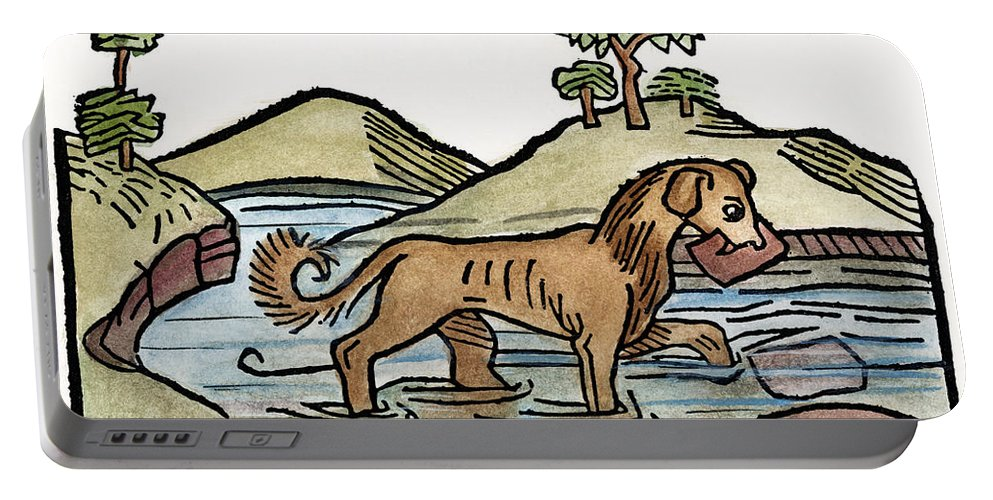 1484 Portable Battery Charger featuring the photograph Aesop: Dog & Shadow, 1484 by Granger