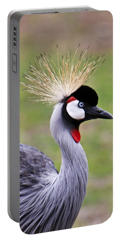 Bird Portable Battery Charger featuring the photograph African Crowned Crane by Douglas Barnett