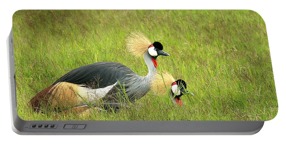Crane Portable Battery Charger featuring the photograph African Gray Crown Crane by Joseph G Holland