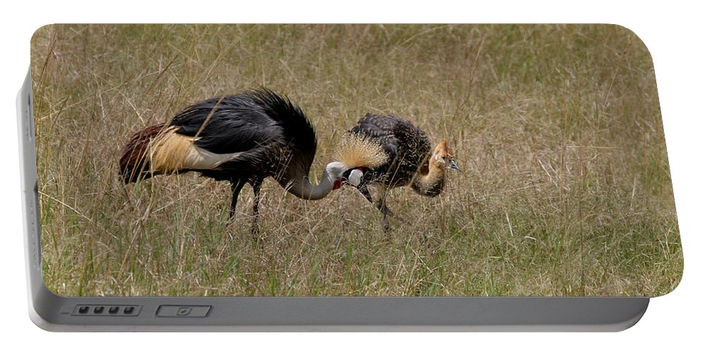 Grey Crown Crane Portable Battery Charger featuring the photograph African Grey Crowned Crane With Chick by Joseph G Holland