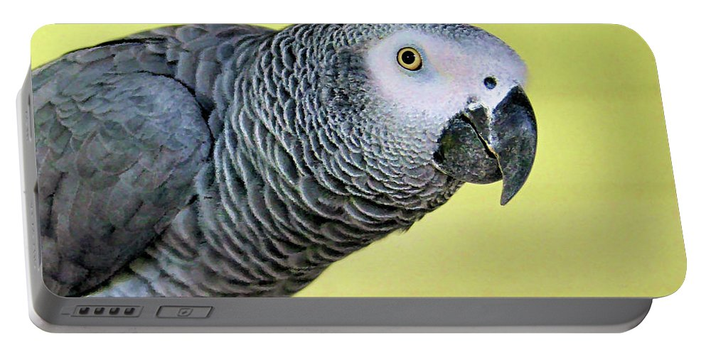 African Grey Portable Battery Charger featuring the photograph African Grey by Kristin Elmquist