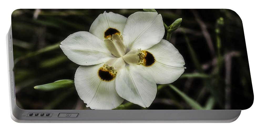 African Iris Portable Battery Charger featuring the photograph African Iris by Chris Coffee