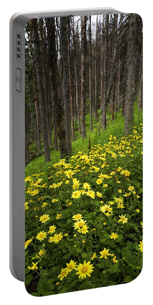 After Portable Battery Charger featuring the photograph After by Chad Dutson