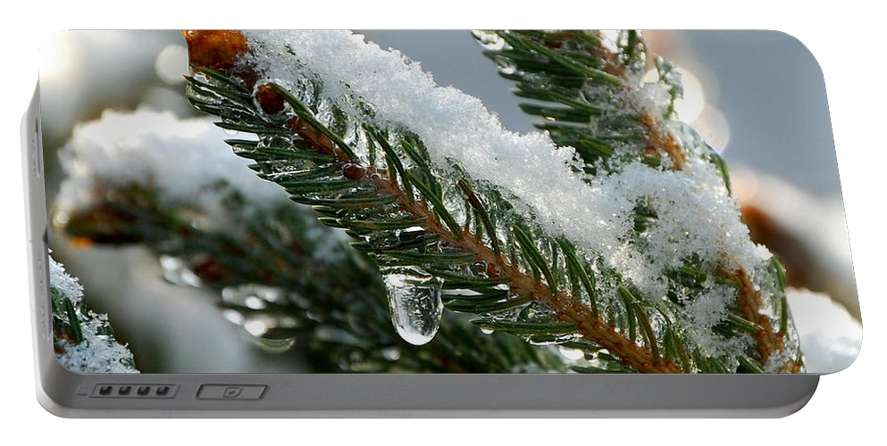 Winter Portable Battery Charger featuring the photograph After Christmas by Lisa Kane