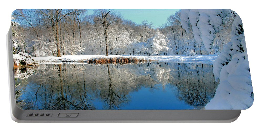 Lake Portable Battery Charger featuring the photograph After The Storm by Kristin Elmquist