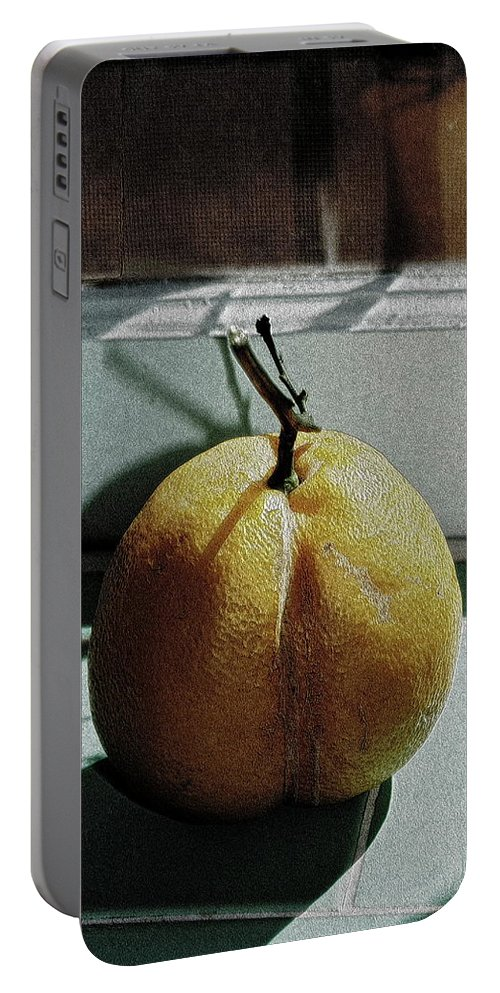Lemon Portable Battery Charger featuring the photograph Afternoon Lemon by Gwyn Newcombe