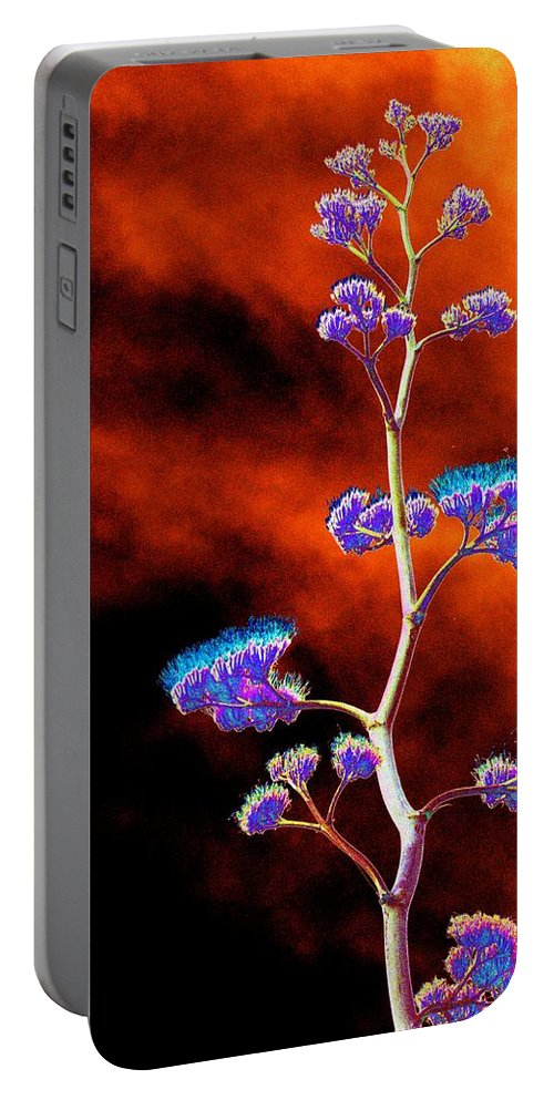 Agave Portable Battery Charger featuring the photograph Agave Through Tequila Eyes by Richard Henne