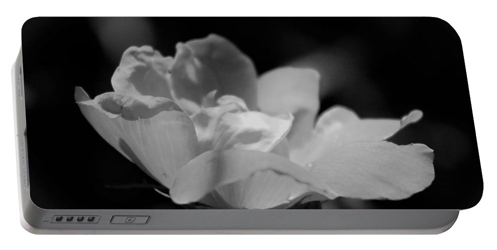 Flower Portable Battery Charger featuring the photograph All Alone by Todd Dunham