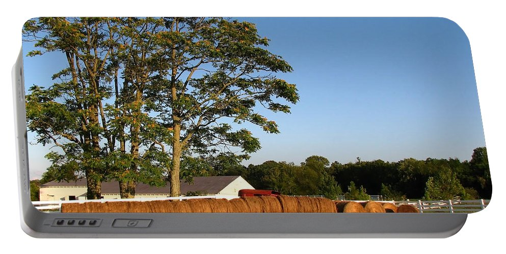 Landscape Portable Battery Charger featuring the photograph All In A Row by Todd Blanchard